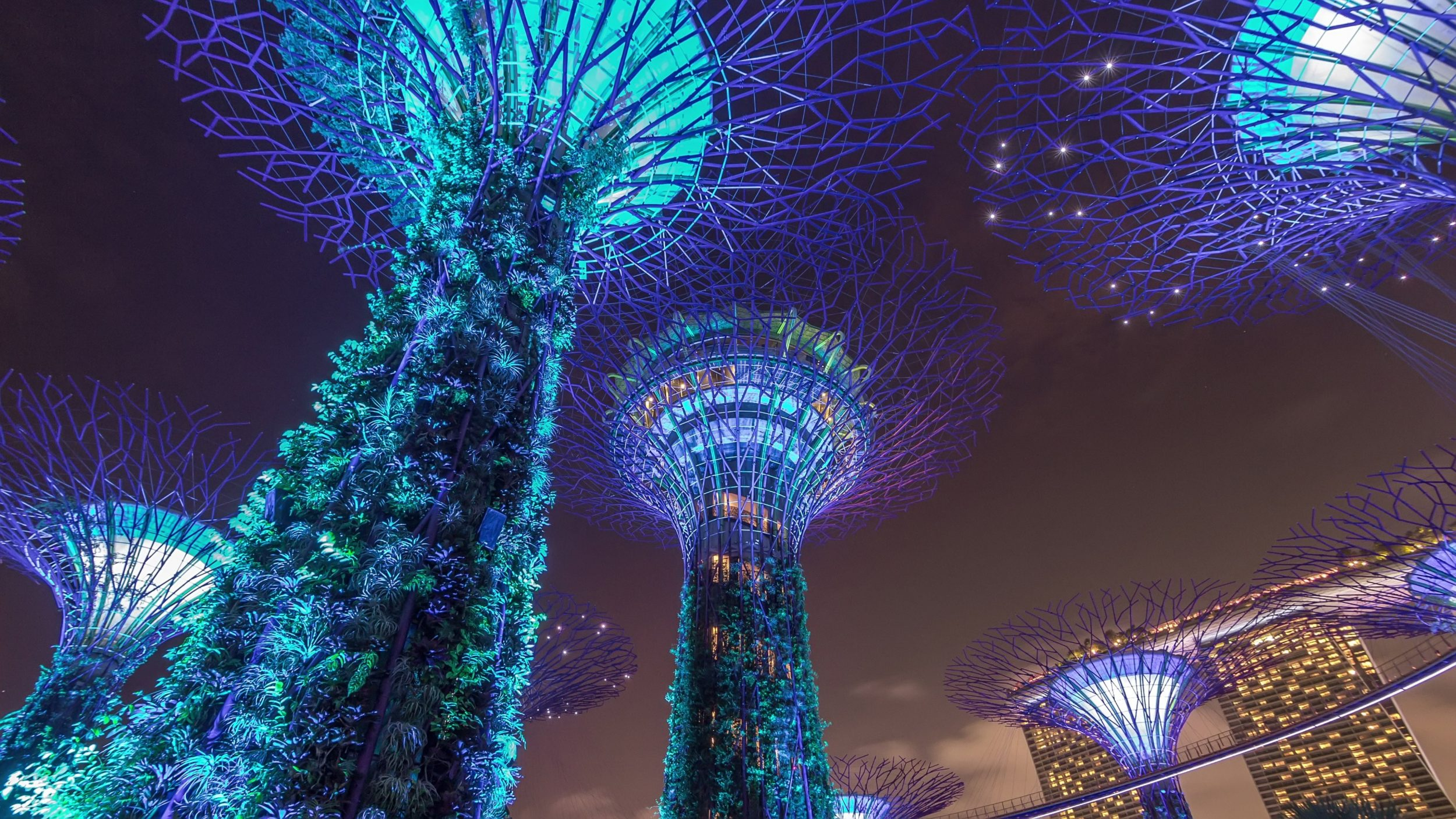 Asia, GTR Asia, Global trade, digitisation